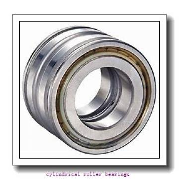 Toyana NF3220 cylindrical roller bearings