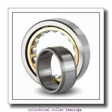INA RSL183028-A cylindrical roller bearings